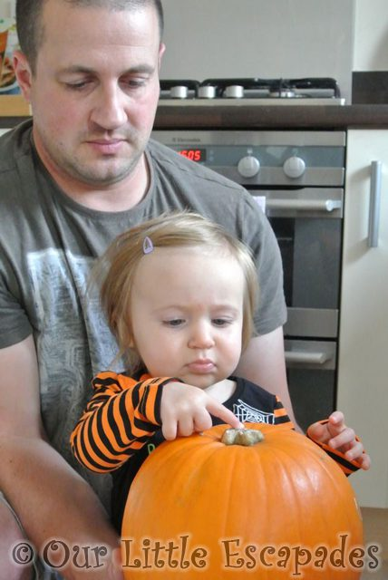 darren little e pumpkin