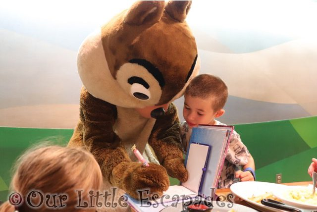 ethan chip signing autograph books