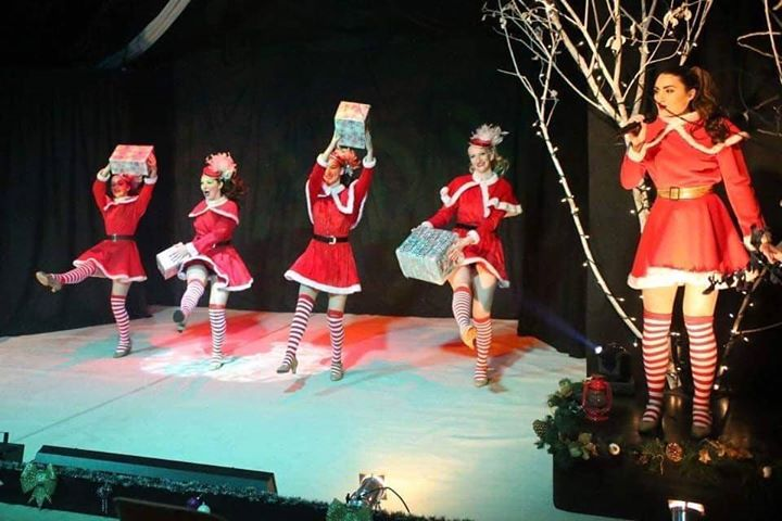 The Christmas Spectacular Show at Stonham Barns Suffolk