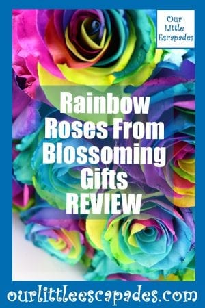 Rainbow Roses From Blossoming Gifts REVIEW