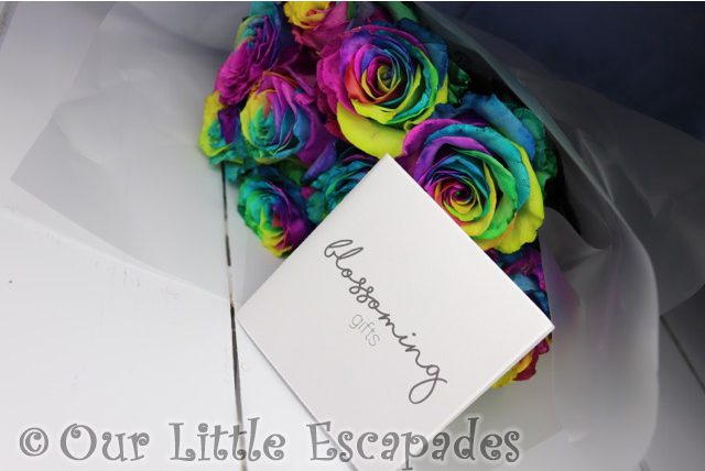rainbow roses blossoming gifts