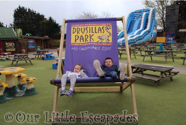 Our Fun-Filled Day At Drusillas Park Review