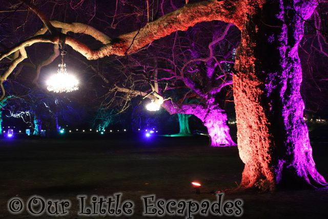 enchanted audley end tree chandeliers