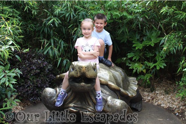 ethan little e tortoise statue colchester zoo