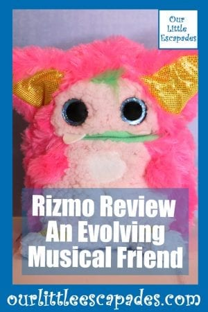 Rizmo Review A Evolving Musical Friend