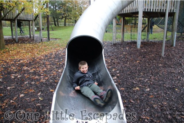 ethan slide great ape play area monkey world dorset