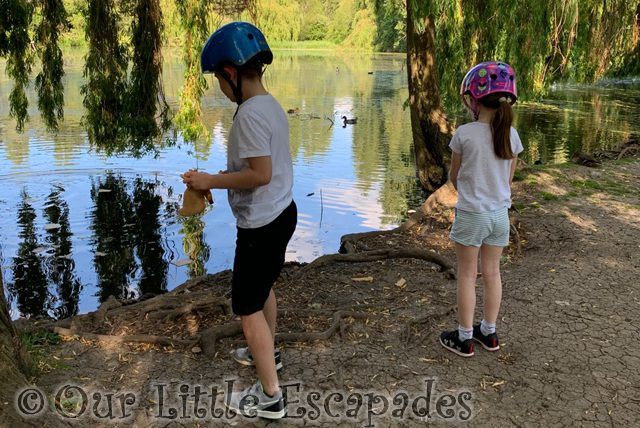 ethan little e feeding ducks siblings may 2020