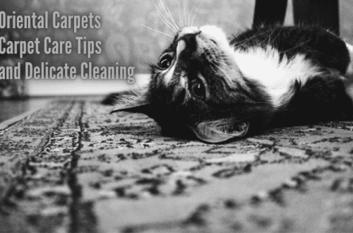 Oriental Carpets Carpet Care Tips and delicate Cleaning