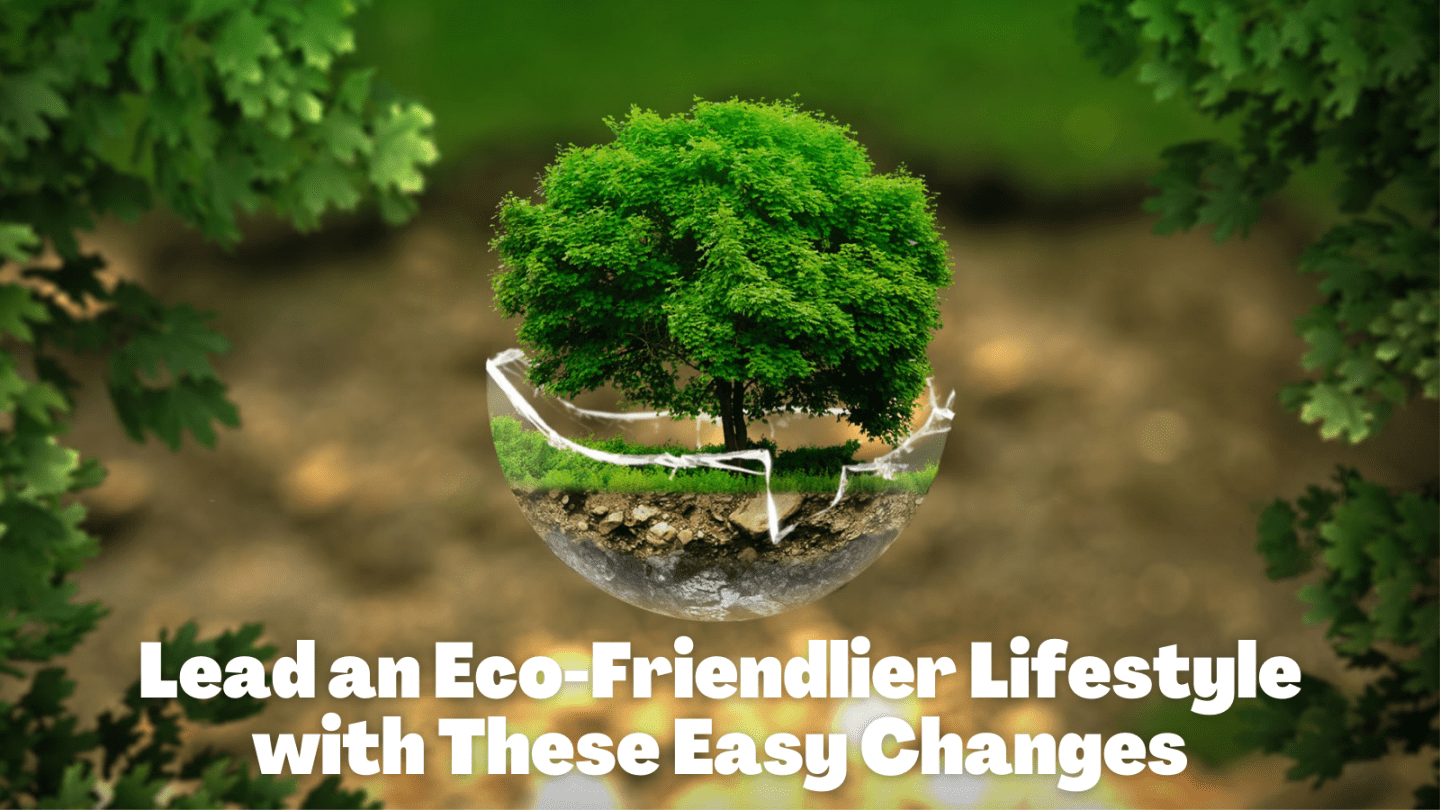Lead an Eco-Friendlier Lifestyle with These Easy Changes