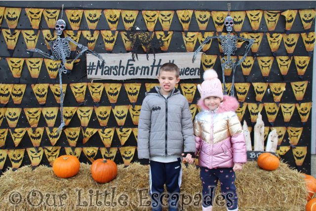 ethan little e skeletons pumpkins marsh farm