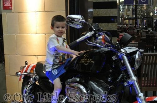 ethan harley davidson my sunday photo