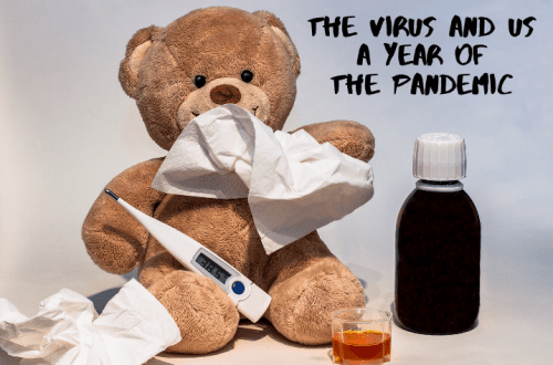 the virus and us a year of the pandemic