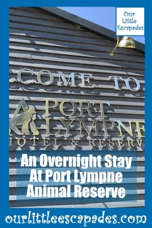 An Overnight Stay At Port Lympne Animal Reserve