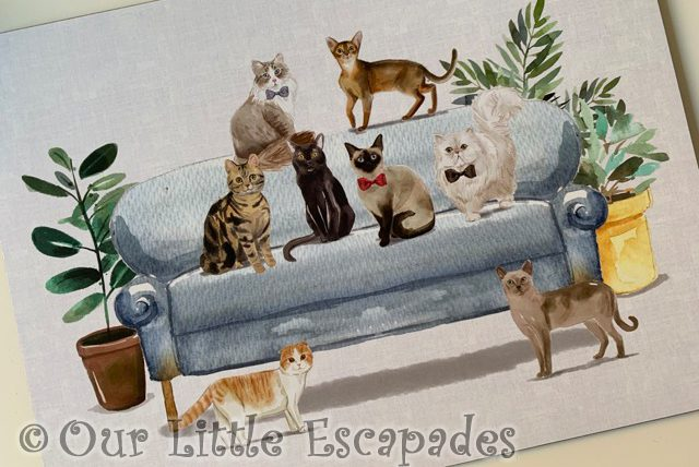 cat picture placemat