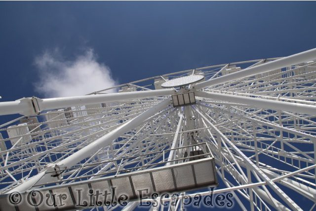 looking up clactons 150th anniversary wheel clacton pavilion wheel