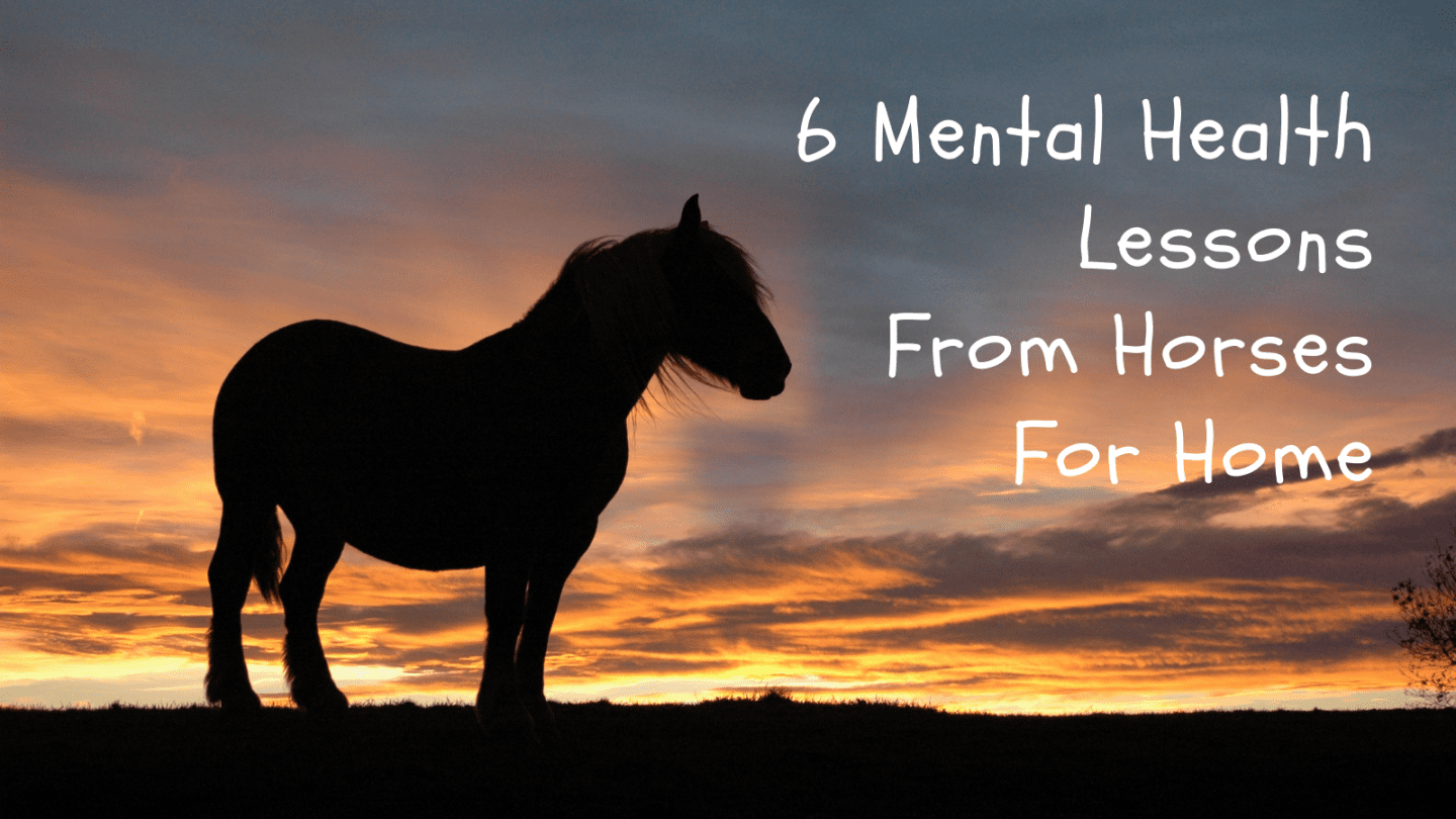 6 Mental Health Lessons From Horses For Home